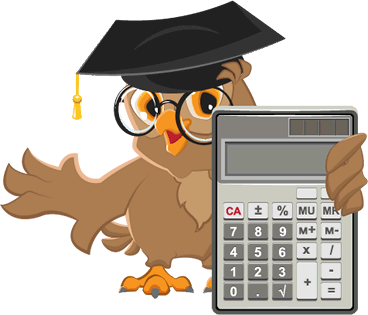 Wise Old Owl with Calculator